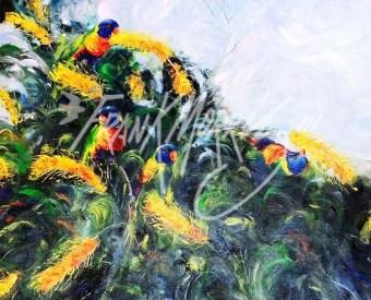 (Y399) Grevillea Rainbows 71 x 85 cm $450