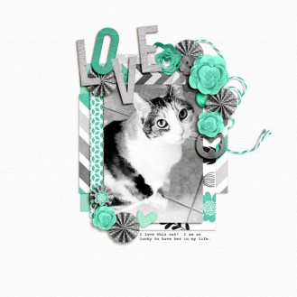 08_Kacy