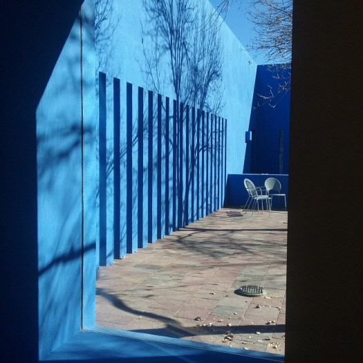 A modern sleek courtyard design with bright blue stucco and the shadow of bare trees on the left wall