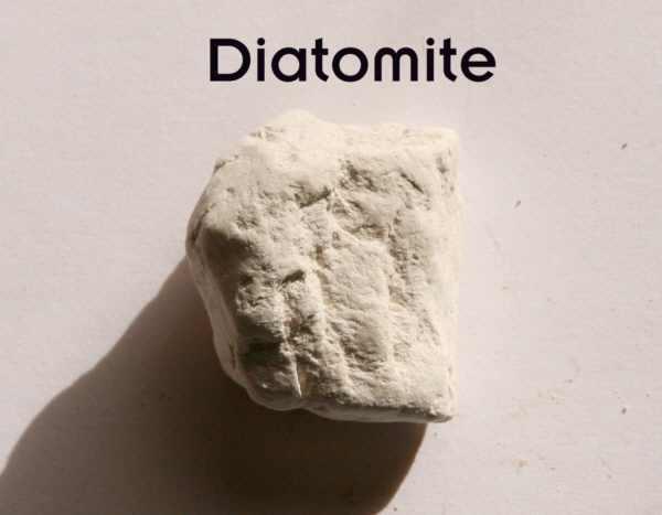 Diatomite-small