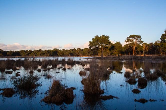 Imagemaker, location scout, Team_Mapito_Wetlands_MoodsNLD-100
