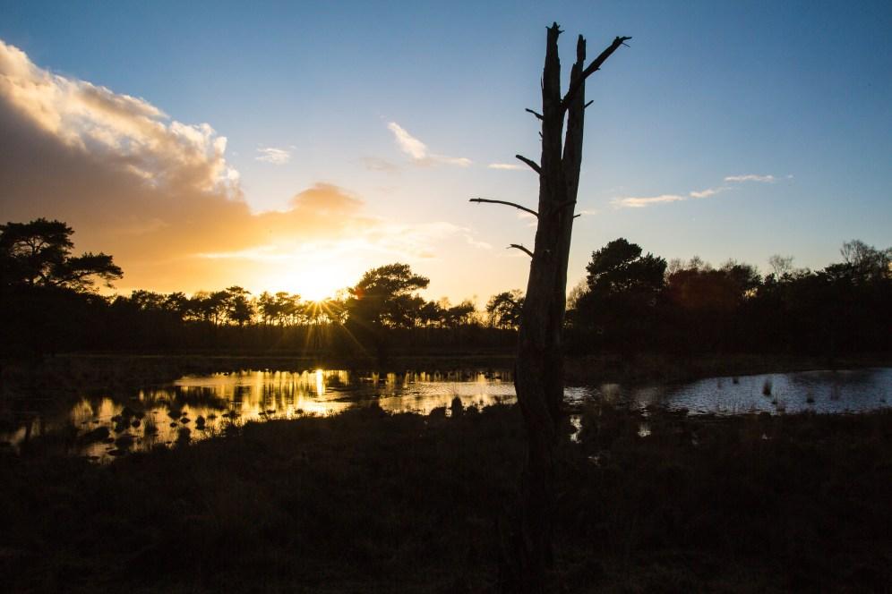 Imagemaker, location scout, Team_Mapito_Wetlands_MoodsNLD-102