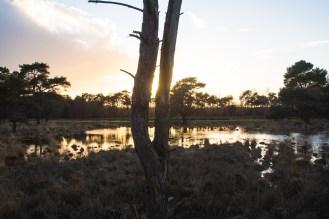 Imagemaker, location scout, Team_Mapito_Wetlands_MoodsNLD--103