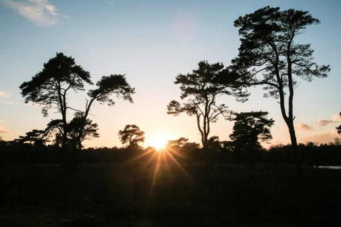 Imagemaker, location scout, Team_Mapito_Wetlands_MoodsNLD-127