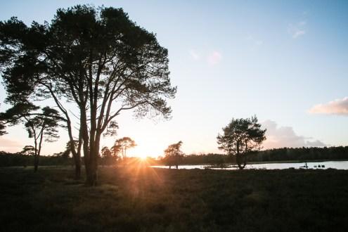 Imagemaker, location scout, Team_Mapito_Wetlands_MoodsNLD-130