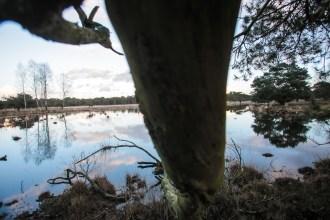 Imagemaker, location scout, Team_Mapito_Wetlands_MoodsNLD-81