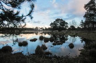 Imagemaker, location scout, Team_Mapito_Wetlands_MoodsNLD-84