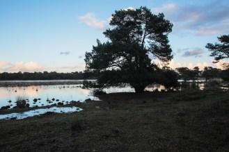 Imagemaker, location scout, Team_Mapito_Wetlands_MoodsNLD-86