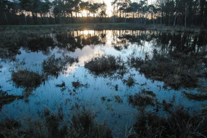 Imagemaker, location scout, Team_Mapito_Wetlands_MoodsNLD-96