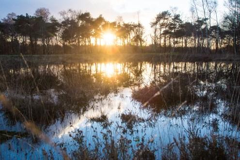Imagemaker, location scout, Team_Mapito_Wetlands_MoodsNLD-97