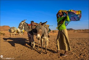 Bedouins of Sudan