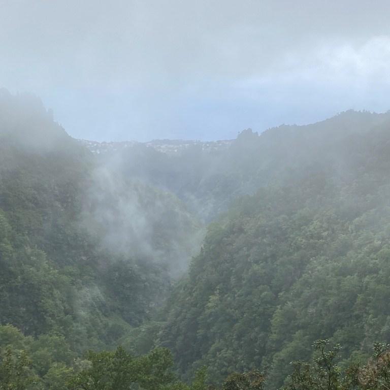 die schönsten Levadas Madeiras
