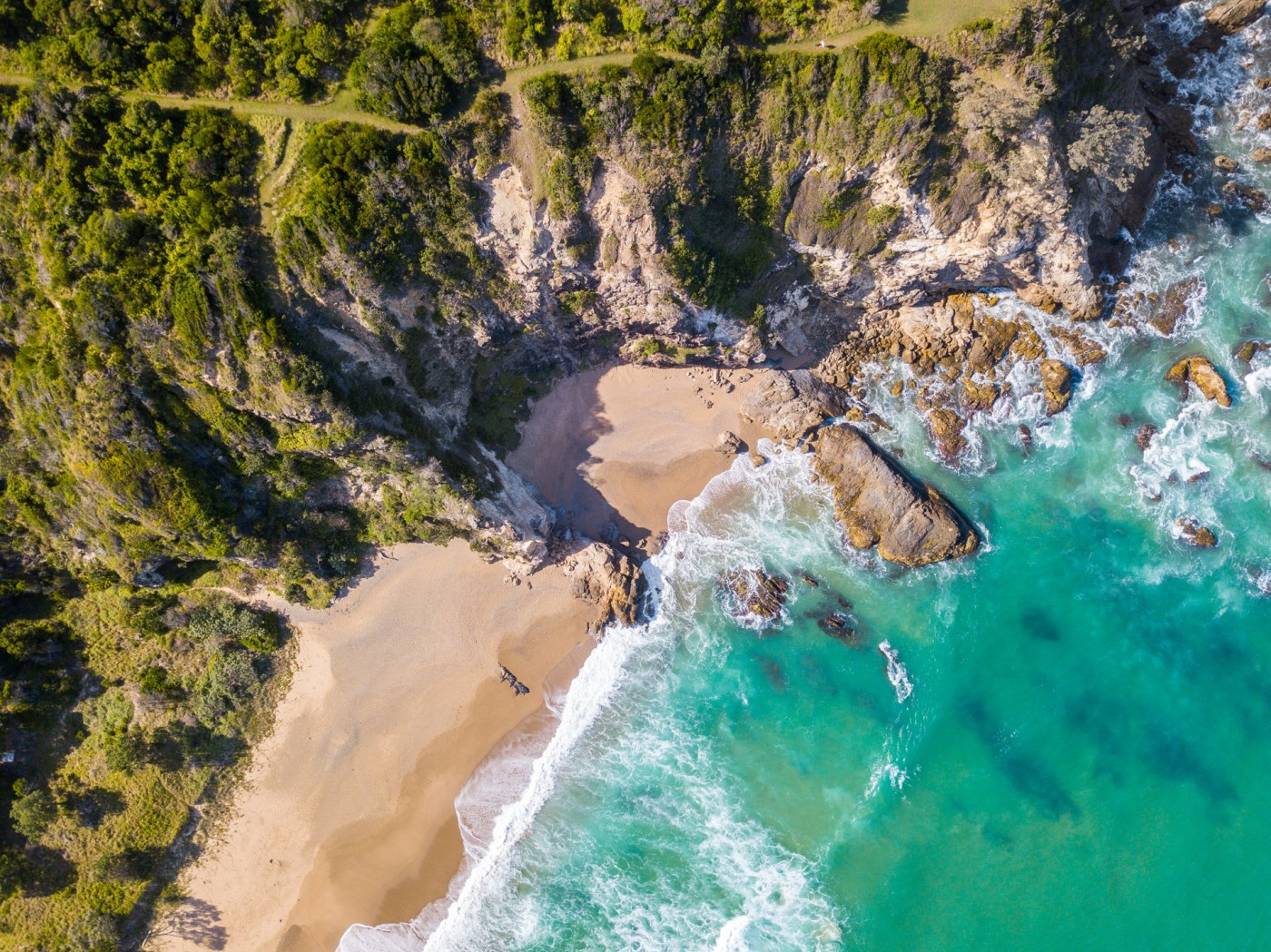 Tropical Paradise Sapphire Beach Coffs Harbour - Franzi Photography