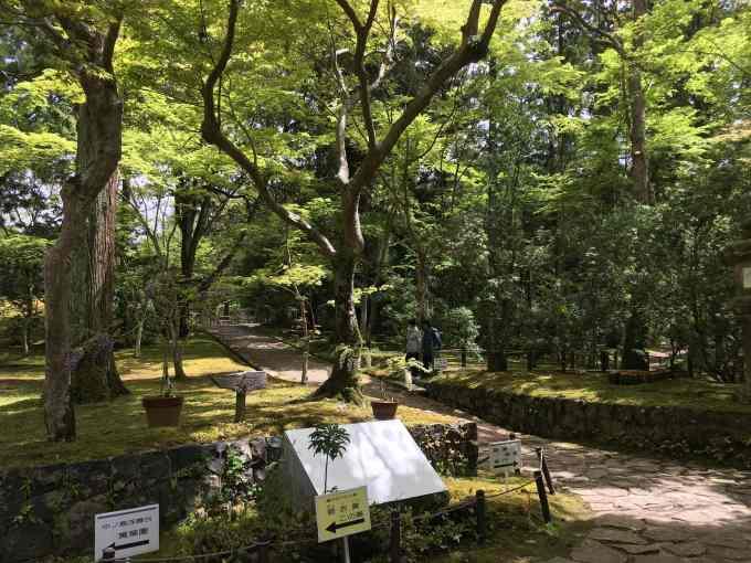 緑に包まれた庭園