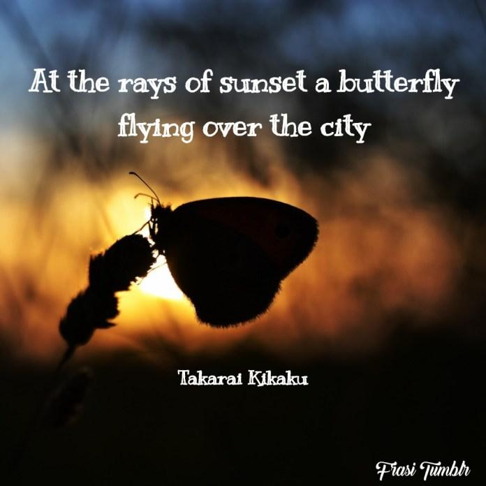frasi-tramonto-inglese-farfalla-città