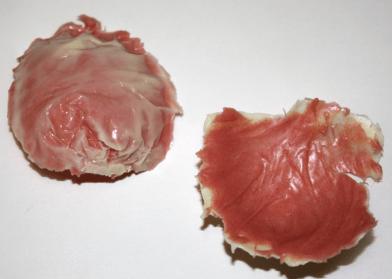 Blütenblatt rosa-weiß