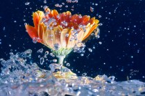 unterwasser2