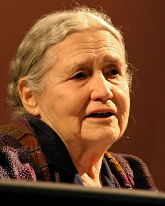 frauenfiguren doris lessing