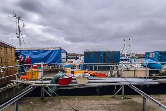 Bild aus dem Fischereihafen Travemünde