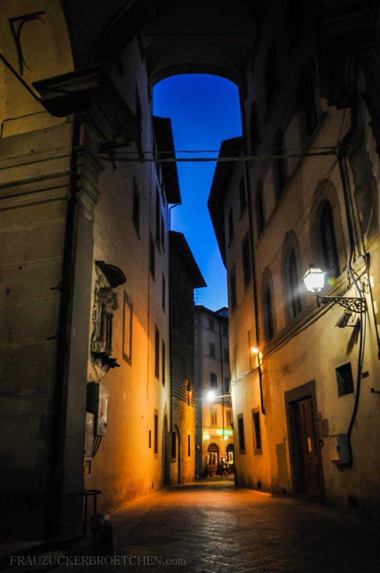 Florenz_an_der_Arno2