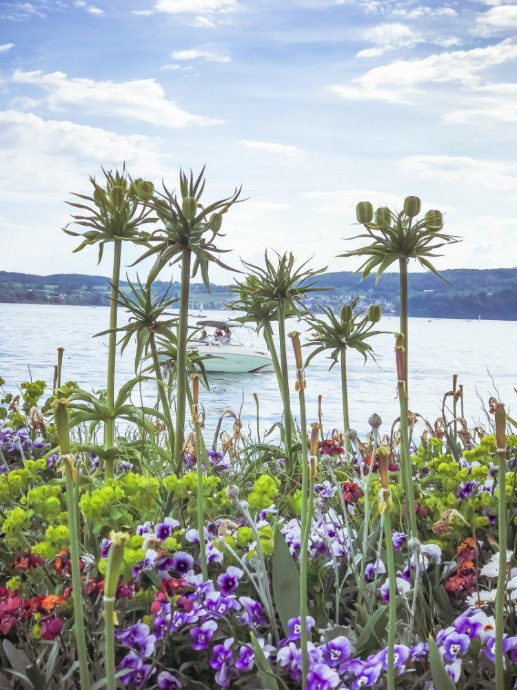 Überlingen am Bodensee_Seepromenade