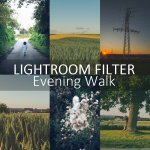 {Freebie} Lightroom Pesets – EVENING WALK