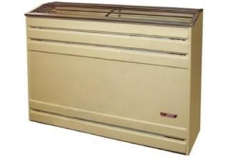 Calefactor a gas tiro natural CTZ