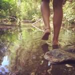 Coaching in Natura: sulle orme dei viandanti