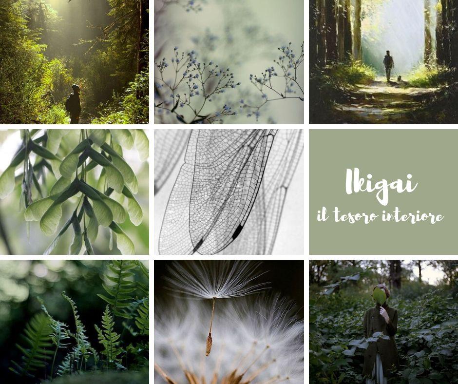 natura ikigai