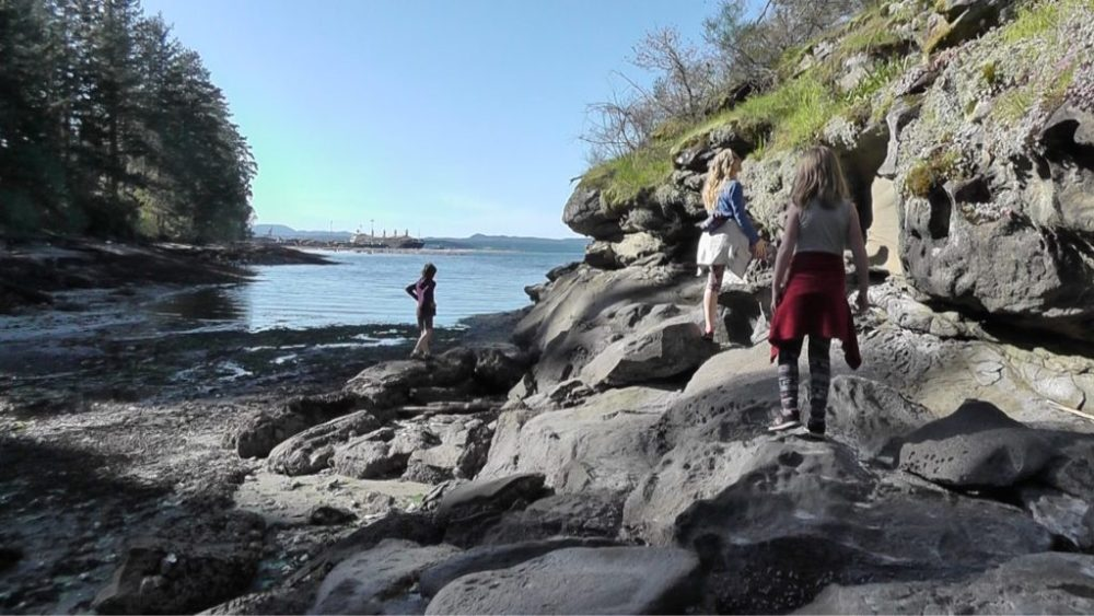 Exploring the creek mouth at Cable Bay