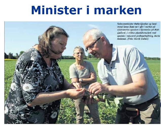Præsentationer fra FRDKs fagdag om efterafgrøder 28. januar 2014