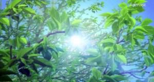 Itsudatte Bokura no Koi wa 10 Centi Datta