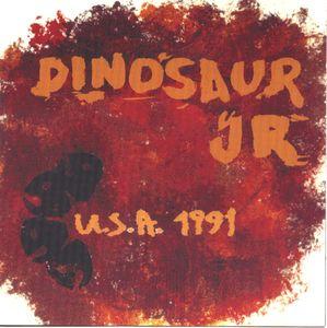 USA 1991 Cover