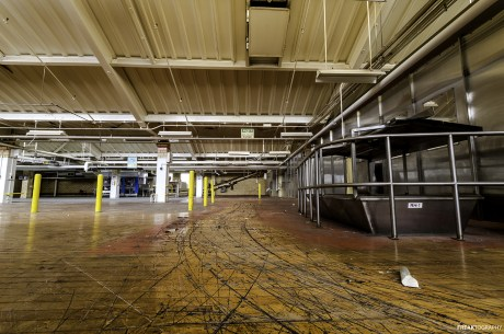 Inside a vacant industrial food production plant, one of the first things we found upon entering was this amazing, well worn wooden floor.