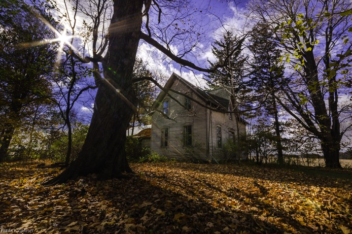 An abandond house in Ontario Canada surrounded by fallen leaves.