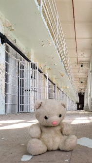 tiny goes to prison