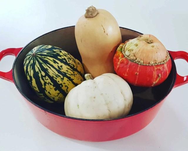 Autumn Squash Varieties