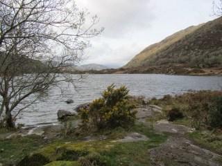 Entre Killarney et Lady's View