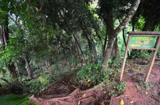 Début de la randonnée Copolia Trail