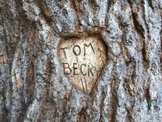 Photo of the carved names of Tom Sawyer and Becky Thatcher in the tree on Tom Sawyer Island at Disneyland, Anaheim, California
