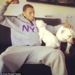 PETA Dog's Chris Brown Over Puppy Selling Business