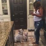 Baby Bump Watch: Todd Tucker Shares Kandi Burruss Baby Bump Photo