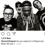 Lil Wayne and Blink-182 will tour together