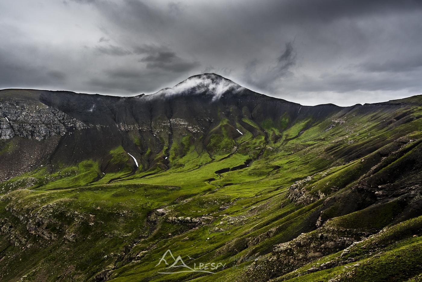 Paysage verdoyant de la Cime de la Bonette (Parc National du Mercantour - Alpes) n°0420