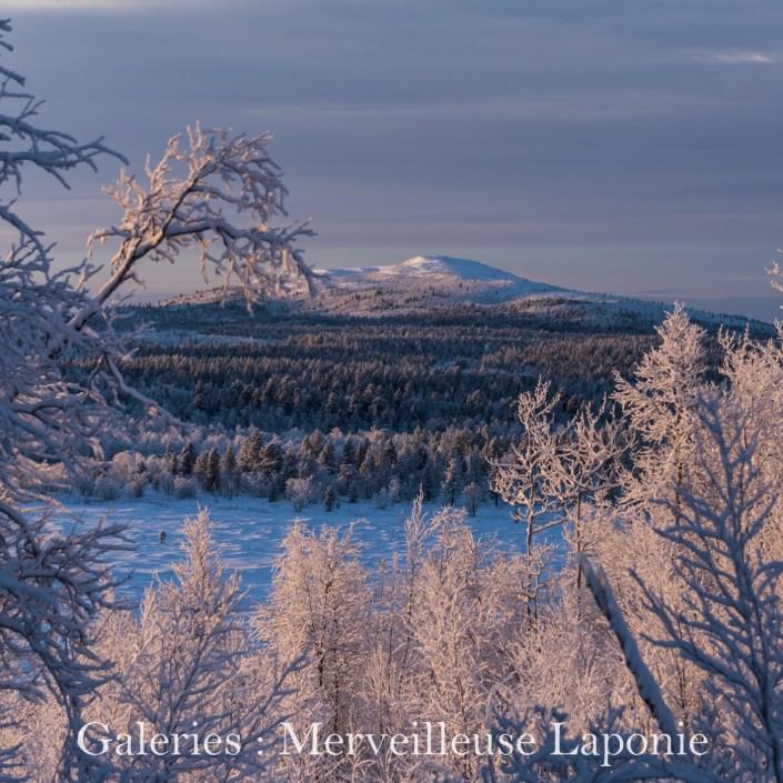 Cliquez ici pour accéder aux galeries : Merveilleuse Laponie