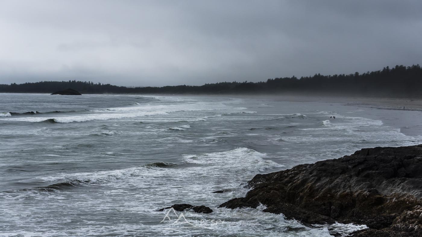 Tofino (Île Vancouver - Colombie Britannique) n°0626