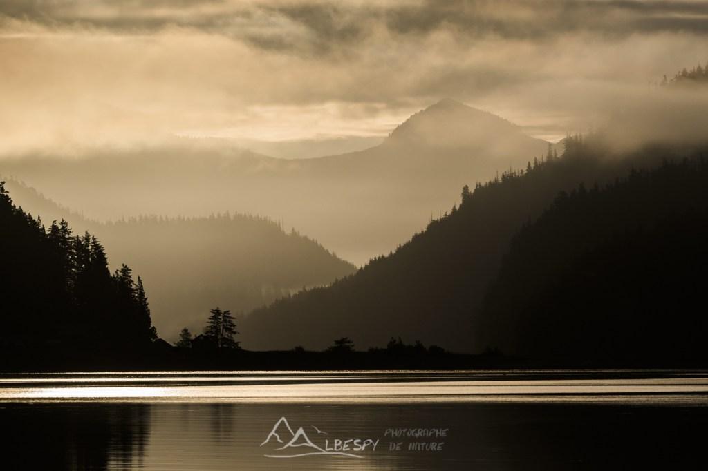 Grice Bay (Île Vancouver - Colombie Britannique) n°0622