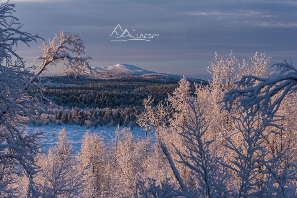 Fenêtre sur la Laponie (Suède) n°1008