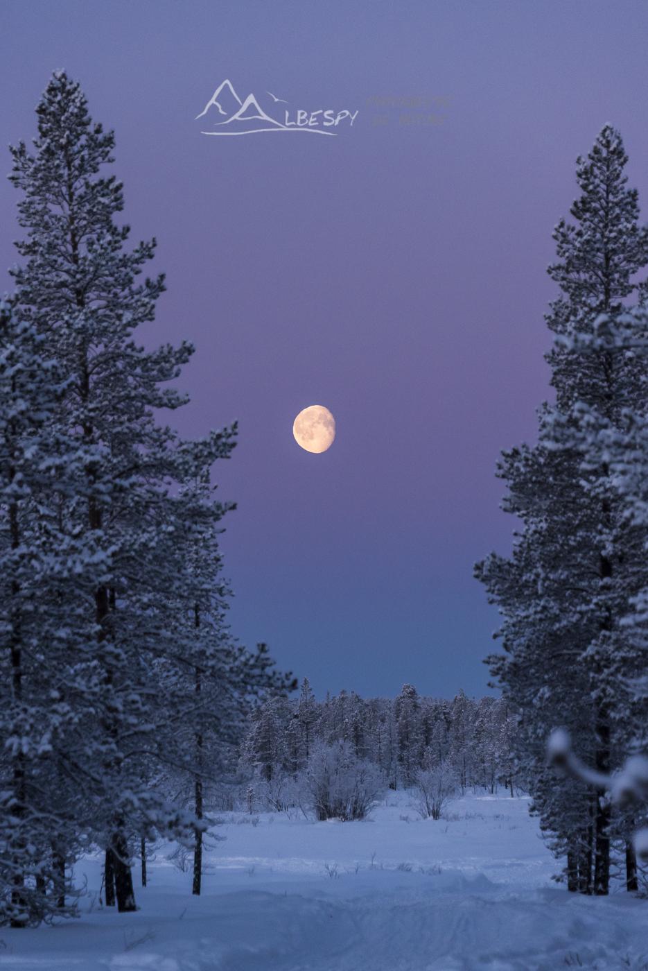 Pleine lune (Finlande) n°1003