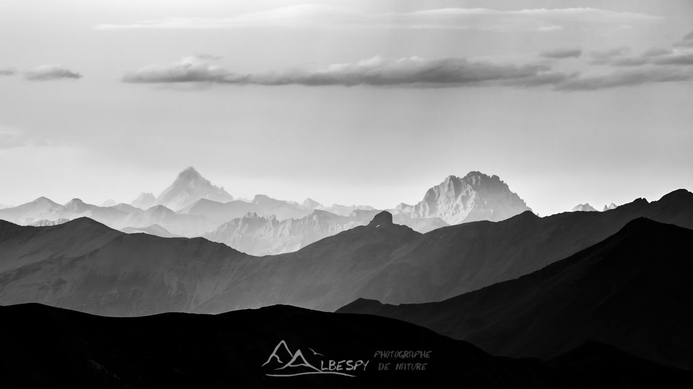 Sommets alpins (Parc National du Mercantour - Alpes) n°0404